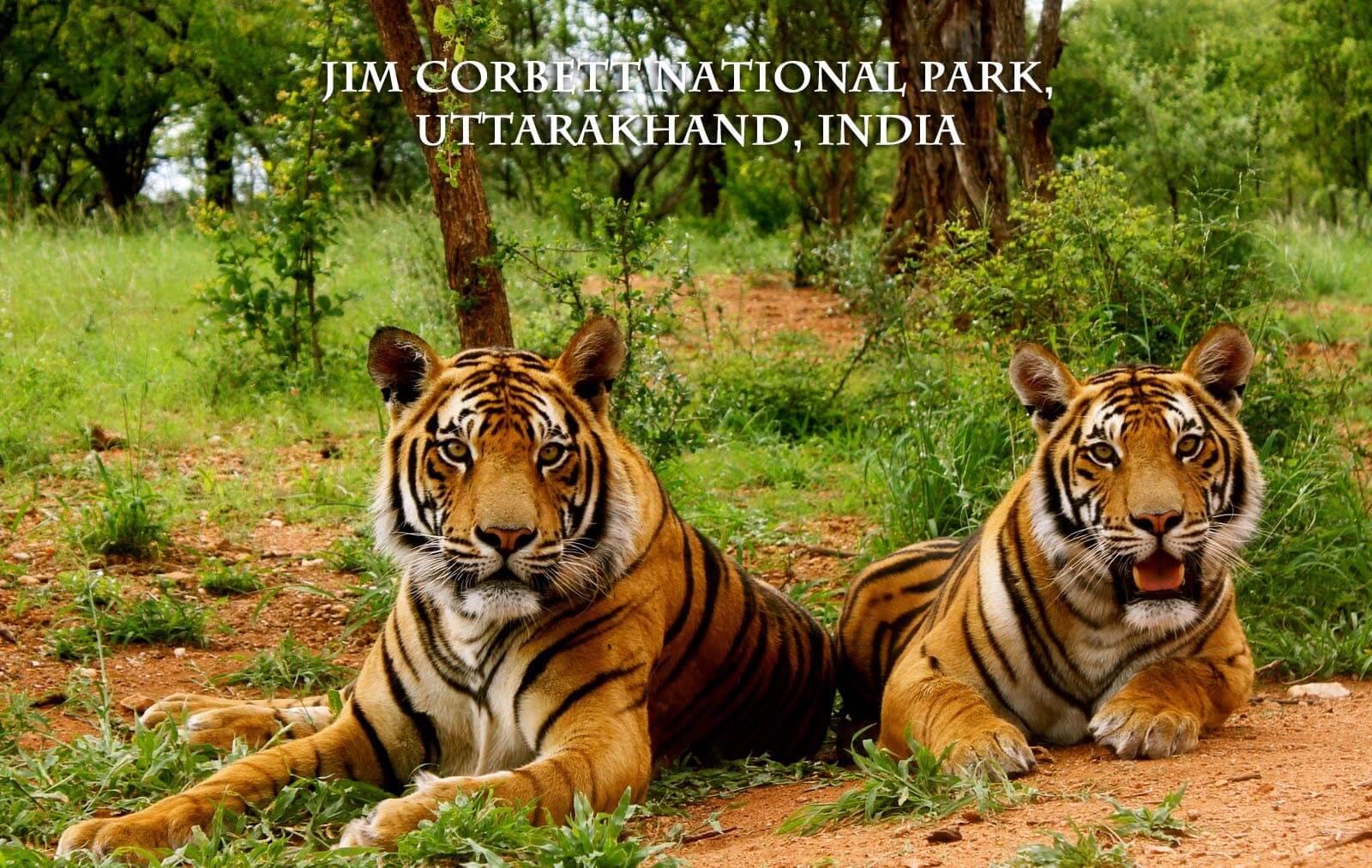 top 10 wildlife sanctuaries