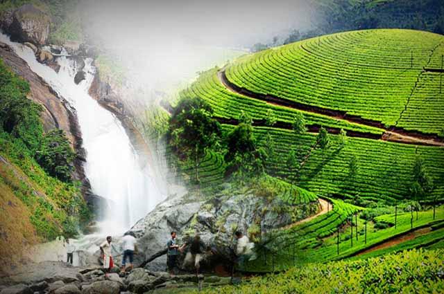 attraction in Munnar